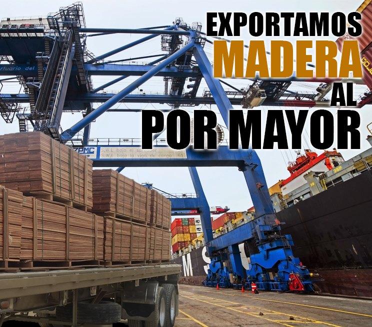 Exportamos-madera-en-cantidades-industriales1