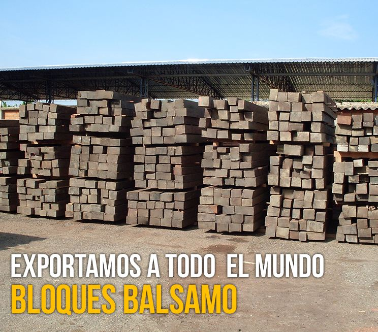 Bloques-balsamo-2