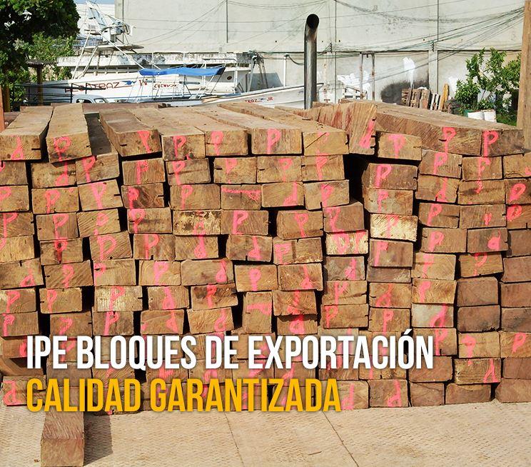 IPE-Bloques