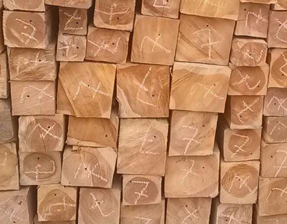 Beneficios del uso de la madera